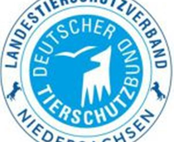 Offener Brief: Ausstieg aus der Kastenstandhaltung von Sauen