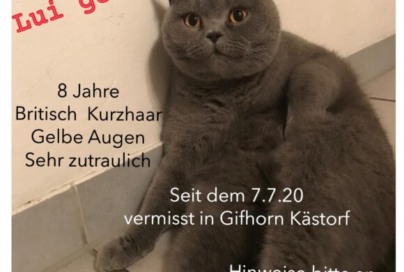Lui aus Gifhorn-Kästorf